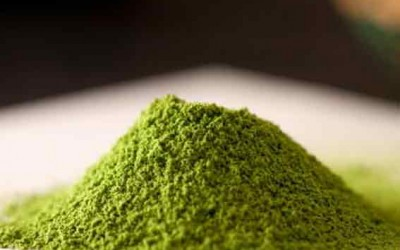 Matcha Recipes Your Family Will Love